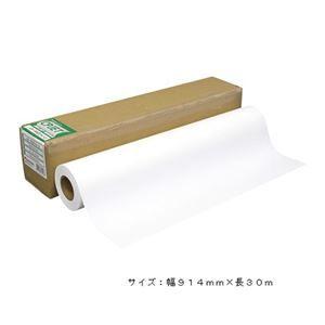 その他 桜井 スター半光沢フォト2 914mm×30m SHP2036 ds-1864424