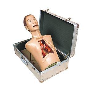 その他 気管支内視鏡練習モデル(看護実習モデル人形) 専用ケース付き M-136-0【代引不可】 ds-1877972