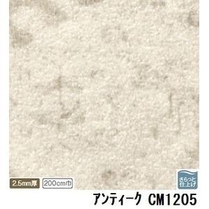 その他 サンゲツ 店舗用クッションフロア アンティーク 品番CM-1205 サイズ 200cm巾×7m ds-1921064