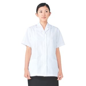 その他 workfriend 調理用白衣女子衿付半袖 3Lサイズ 予約販売 SKA337 ds-1926051 限定品