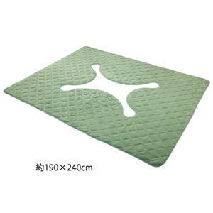その他 洗えるキルトタイプ掘ごたつラグ 2: 約190×240cm グリーン ds-1264755