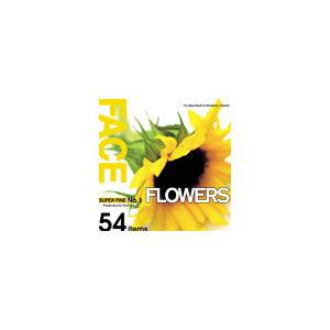 その他 写真素材 SUPER FINE No.1 FLOWERS (花々) ds-67137