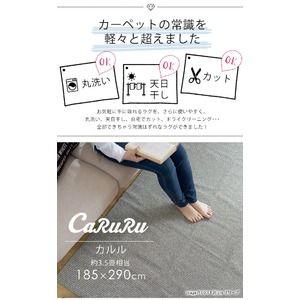 その他 丸洗い対応 ラグマット/絨毯 【185cm×290cm オリーブ】 長方形 日本製 洗える 折りたたみ 軽量 カット可 『カルル』 ds-2044977