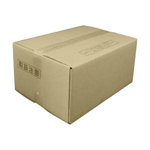 その他 ダイニック デイライトペーパー #4 橙A4T目 81.4g 1箱(1000枚) ds-2126253