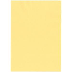 その他 北越コーポレーション 紀州の色上質A3Y目 薄口 クリーム 1箱(2000枚:500枚×4冊) ds-2126863