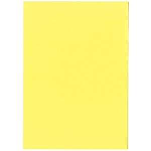 その他 北越コーポレーション 紀州の色上質A3Y目 薄口 やまぶき 1箱(2000枚:500枚×4冊) ds-2126870