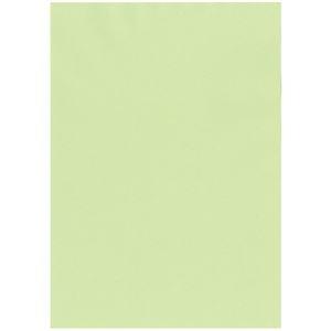 その他 北越コーポレーション 紀州の色上質A3Y目 薄口 若草 1箱(2000枚:500枚×4冊) ds-2126876