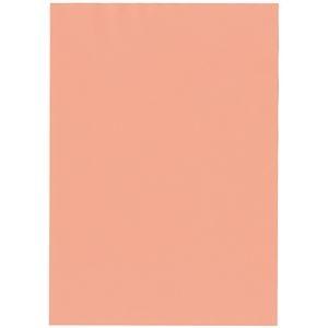 その他 北越コーポレーション 紀州の色上質A4T目 薄口 サーモン 1箱(4000枚:500枚×8冊) ds-2126893