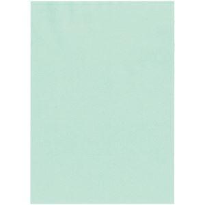 その他 北越コーポレーション 紀州の色上質A4T目 薄口 浅黄 1箱(4000枚:500枚×8冊) ds-2126907