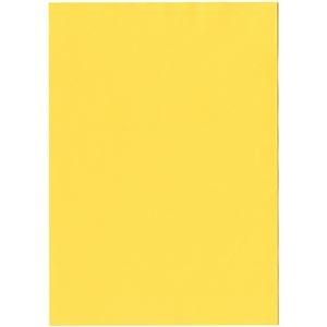 その他 北越コーポレーション 紀州の色上質A4T目 薄口 濃クリーム 1箱(4000枚:500枚×8冊) ds-2126910