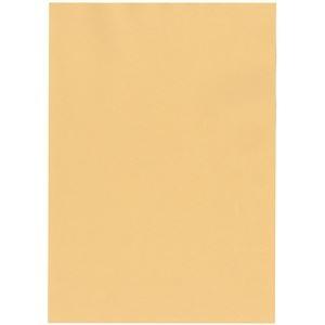 その他 北越コーポレーション 紀州の色上質A4T目 薄口 白茶 1箱(4000枚:500枚×8冊) ds-2126911