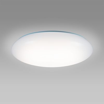 NEC LEDシーリングライト ~12畳 HLDC12211SG【納期目安:1週間】