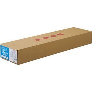 その他 桜井 IJトレペ80 A1ロール594mm×50m 2インチコア IJG80B 1箱(2本) ds-2137091