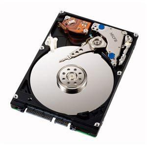 その他 アイオーデータ Serial ATAIINCQ対応 2.5インチ 内蔵ハードディスク 500GB HDN-S500A5 1台 ds-2141180