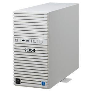 その他 NEC Express5800/T110i(4C/E3-1220v6/4G/2HD-W2012R2)Xeon SATA 500GB*2/RAID1 ds-2150439