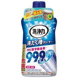 その他 (まとめ) エステー 洗浄力 洗たく槽クリーナー 550g【×30セット】 ds-2158186