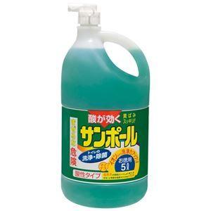 その他 (まとめ) 大日本除蟲菊 サンポール 3L【×10セット】 ds-2158202