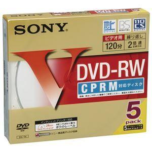 その他 (まとめ) ソニー 録画用DVD‐RW 5枚 5DMW12HPS【×10セット】 ds-2159623