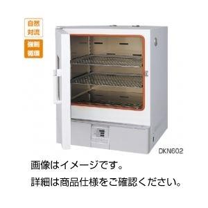 その他 定温恒温器 DKN602 ds-1596746