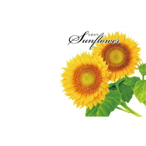 その他 【500個セット】横型イラスト種子夏の花1個(ひまわり) 2214170