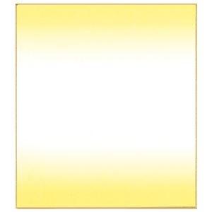 その他 (まとめ)菅公工業 色紙ぼかし 画仙紙 クリーム ケ438【×200セット】 ds-2179472