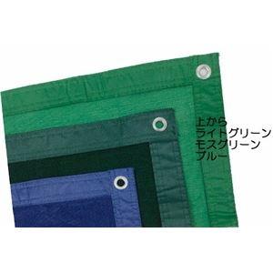 その他 防風ネット 遮光ネット 0.9×10m ブルー 日本製【代引不可】 ds-2199826