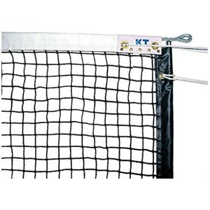 その他 エコノミータイプ硬式テニスネット 日本製【代引不可】 ds-2199836