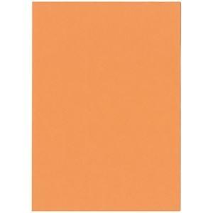 その他 (まとめ)北越コーポレーション 紀州の色上質A4T目 薄口 アマリリス 1箱(4000枚:500枚×8冊)【×3セット】 ds-2214577