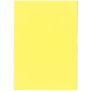 その他 (まとめ)北越コーポレーション 紀州の色上質A3Y目 薄口 やまぶき 1冊(500枚)【×3セット】 ds-2214832
