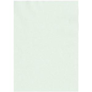 その他 (まとめ)北越コーポレーション 紀州の色上質A3Y目 薄口 うす水 1冊(500枚)【×3セット】 ds-2214840