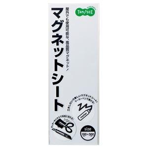 その他 (まとめ) TANOSEE マグネットカラーシート レギュラー 300×100×0.8mm 白 1セット(10枚) 【×10セット】 ds-2234399