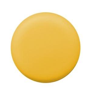 その他 (まとめ) PLUS カラーマグネット 直径20mmイエロー CP-020M 1パック(6個) 【×50セット】 ds-2243996