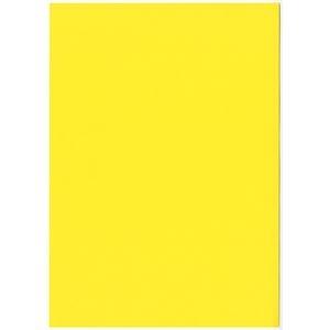 その他 (まとめ) 北越コーポレーション 紀州の色上質A4T目 薄口 黄 1冊(500枚) 【×5セット】 ds-2222029