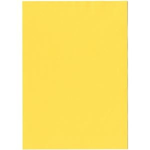 その他 (まとめ) 北越コーポレーション 紀州の色上質A4T目 薄口 濃クリーム 1冊(500枚) 【×5セット】 ds-2222070