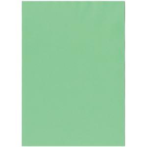 その他 (まとめ) 北越コーポレーション 紀州の色上質A4T目 薄口 若竹 1冊(500枚) 【×5セット】 ds-2222075