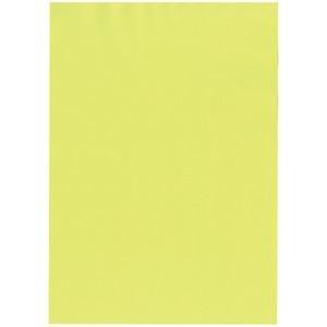 その他 (まとめ) 北越コーポレーション 紀州の色上質A4T目 薄口 もえぎ 1冊(500枚) 【×5セット】 ds-2222083