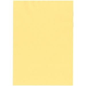 その他 (まとめ) 北越コーポレーション 紀州の色上質A4T目 薄口 クリーム 1冊(500枚) 【×5セット】 ds-2222089