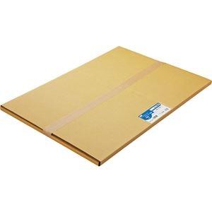 その他 (まとめ) TANOSEE 普通紙 A2カット 420×594mm 1箱(100枚) 【×5セット】 ds-2222229