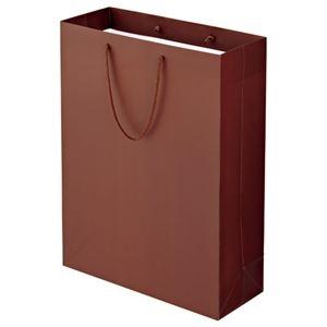その他 (まとめ) TANOSEE マットコート手提げ袋 LL ヨコ380×タテ500×マチ幅150mm ブラウン 1パック(10枚) 【×5セット】 ds-2223597