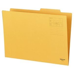 その他 (まとめ) コクヨ 個別フォルダー A3 KNA3-IFNX10 1パック(10冊) 【×10セット】 ds-2228377