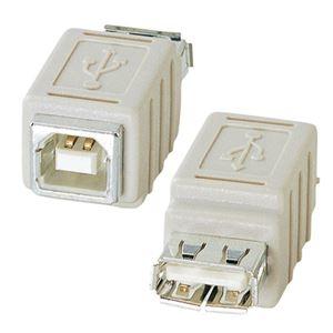その他 (まとめ) サンワサプライ USBアダプタ(A)メス-(B)メス AD-USB6 1個 【×10セット】 ds-2231352