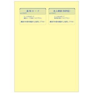 その他 ヒサゴマイナンバー管理台帳(収集用台紙付) A4 MNOP004 1パック(20組) 【×10セット】 ds-2231853