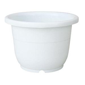 【×60個セット】 8号 ds-2247993 【輪鉢 穴付き ベーシック シンプル (まとめ) ホワイト】 園芸 ガーデニング用品 植木鉢/ポット その他