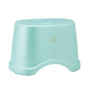 その他 (まとめ) 風呂椅子/バスチェア 【高さ22cm ブルー】 コンパクトサイズ 底ゴム付き バス用品 『Florist』 【12個セット】 ds-2259075