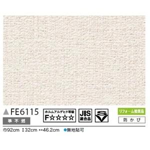 その他 カラー 無地調 のり無し壁紙 サンゲツ FE-6115 92cm巾 45m巻 ds-2283953