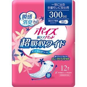 その他 (まとめ)日本製紙 クレシア ポイズ 肌ケアパッド超吸収ワイド 一気に出る多量モレに安心用 1パック(12枚)【×10セット】 ds-2300214