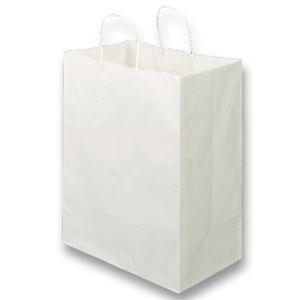 その他 TANOSEE 紙手提袋 丸紐マチ広・大 ヨコ350×タテ440×マチ幅210mm 白無地 1セット(300枚:50枚×6パック) ds-2293876