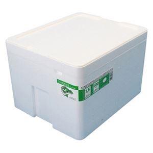 その他 (まとめ)石山 発泡容器 なんでも箱 20.7Lホワイト TI-200AII 1個【×10セット】 ds-2308625