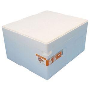 その他 (まとめ)石山 発泡容器 なんでも箱 28.2Lホワイト TI-330RII 1個【×10セット】 ds-2308636