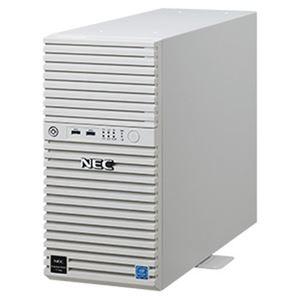 その他 NEC Express5800/T110j(2nd-Gen) Xeon/8GB/SATA4TB*2/RAID1/W2016 NP8100-2814YPDY ds-2328566